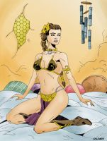 Slave Leia Colors by cajunthief