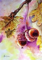autum's fruit by danuta50