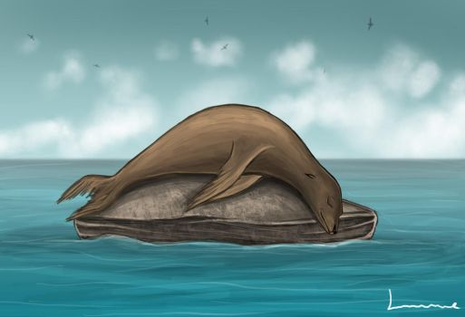 Sea Lion Sleeping by Louisetheanimator