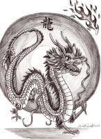 Year of the Dragon-Zodiac by Smithy9
