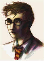 Potter by stormkeeper