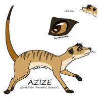 Azize the Meerkat by 3933911
