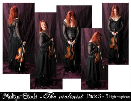 The Violinist - Pack 3 by Meltys-stock