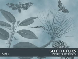 Butterflies in Habitats Vol. 2 by remittancegirl