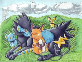 Luxray and Raichu by PacificPikachu