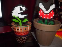 Potted 8-bit Art by Libbyseay