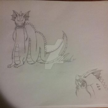 Chinese Dragon Sketch by Cassidillian