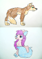Sketches: Two Fluffs by Katridog