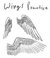 Wing Practice by Multiponi