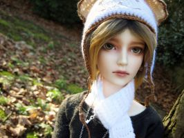 BJD: Autumn days by Kazezakura