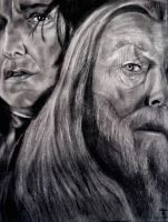Snape and Dumbledore by tanjadrawing