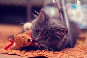 Playing... by Timo-San