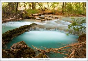 Turquoise Pool by Rhavethstine