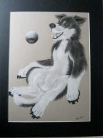 A game of fetch by jmillart