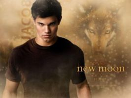 Jacob New Moon by DarkLeesh