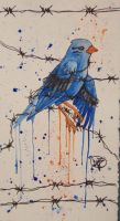 Barbed Wire Blue Bird by Color-Droplet