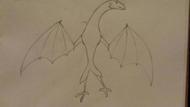 does this look like a Bird or a Dragon  by Pikaman123
