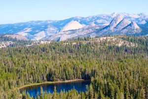 Edson Lake from Above by gravisman