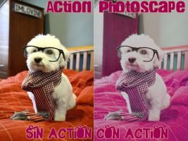 Action PhotoScape 10 by SelenatoryRusher