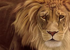 Large Lion, digital painting by Sarahharas07