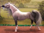 OOAK Arab mare model horse by Tawneyhorses