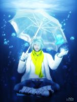 The Jellyfish Song (Clear DMMD) by Niekra