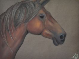 Horse (my first pastel by Le-Papillon-57