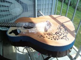 Guitar Project 2010 - Phase 4 by Kalutica