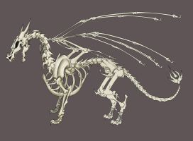 Dragon Skeleton by snosauges