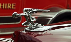 1940s Packard Hood Ornament by Taking-St0ck