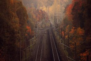 fall8 by Second-G