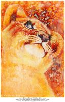 Sunnyside Simba - Complete by Nicole-Marie-Walker