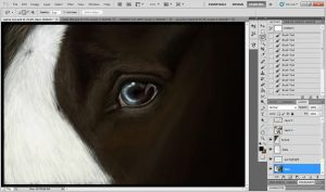 Gypsy eye WIP by BangGoesReality
