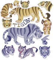 T I G O N by tigon