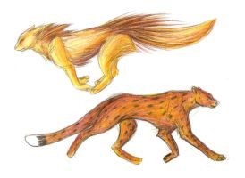 Big Cats by Joava