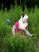 In the Tall Grass by FlockofFlamingos