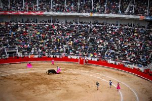 Fiesta Taurina by santiago-simple