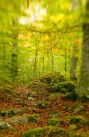 remaining green by magnusandersson