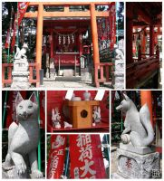 Inari Shrine by fuu-kay