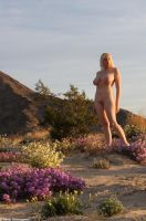 Field of Fragrance by dwingephotography