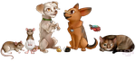 The Chesnut Mutts Banner by Lily-Bell-Cat