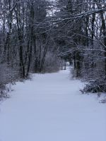 Snowy Path to the Dead by In-7hi5-7wi1igh7