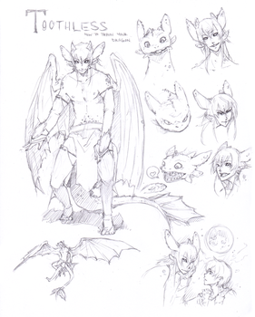 :Toothless: Character Sheet by Chuuchichu