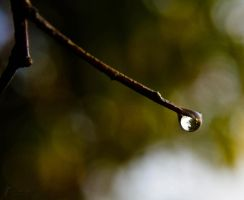 Droplet 2 by Jastan