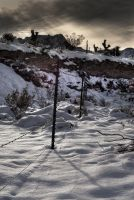 Snow and Fence by sciph