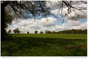 Fine English Fields by In-the-picture