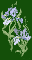 Irises by OrigamiCupcake