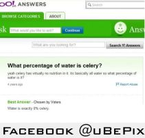 What percentage of water is celery? by dxdiagbg