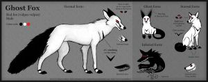 Ghost Fox reference sheet by Illusir