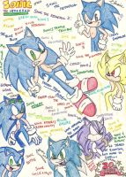 SONIC'S 20th ANNIVERSARY by Sonicemma